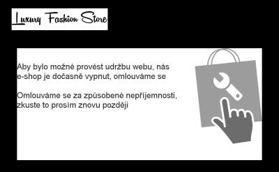 Vzled internetové stránky obchodu Luxury Fashion Store